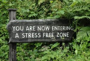 Stress-Free (1)