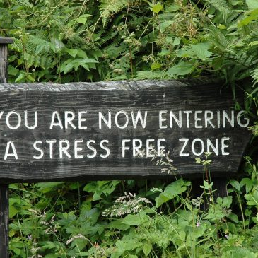 Recommendations on how to create a Stress Free Zone